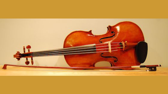 Discovering the Viola: Purchase, Set-up and Initial Discoveries