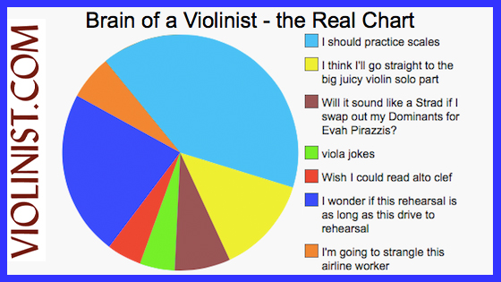 Brain of a Violinist -- the Real Chart!