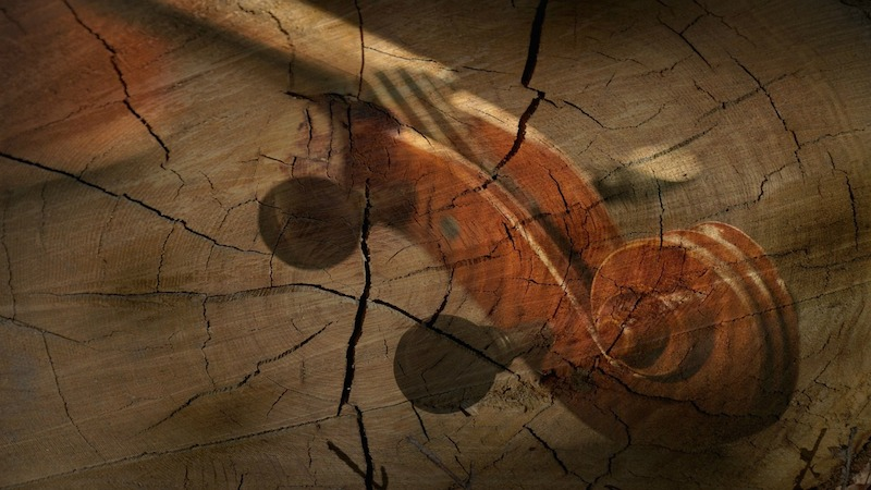 V.com weekend vote: Have you ever damaged your violin, or had it damaged by someone or something else?