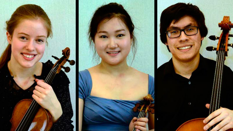 Applications Open for 2018 Johansen International Competition for Violin, Viola and Cello