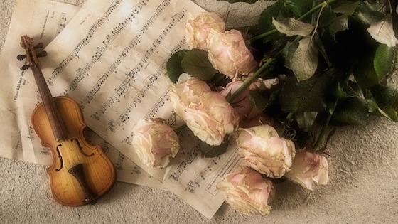 wedding music, violin, roses