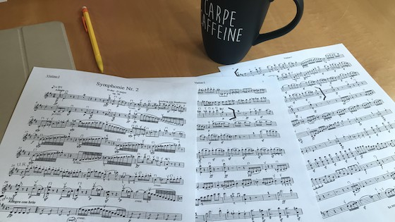 Back to School: Orchestra Audition Prep Tips