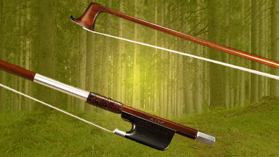 High-End Composite Bows in a World of Endangered Trees
