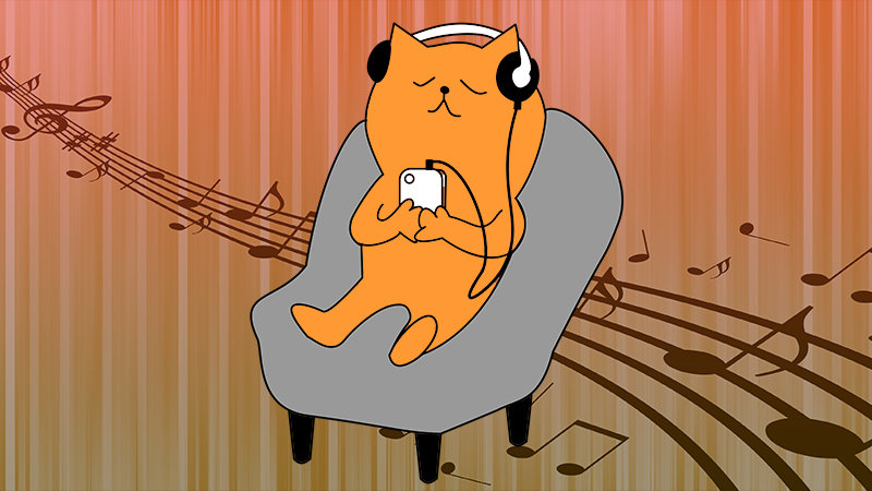 happy listening cat