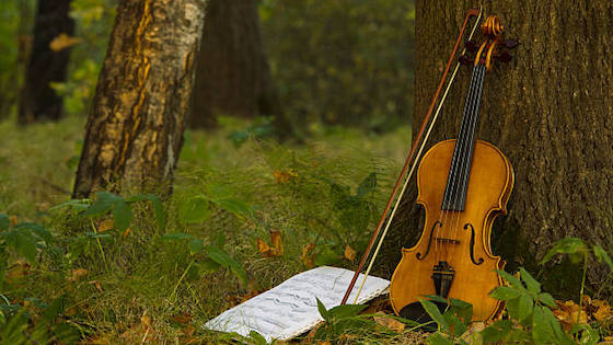 Shifting to Green: Being an Environmentally Conscious Musician