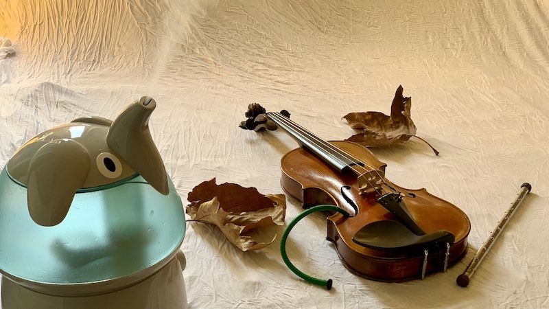The Dangers of Dry Weather: Humidify Your Violin