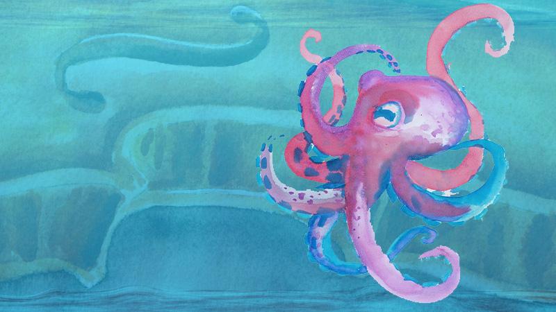 violin octopus