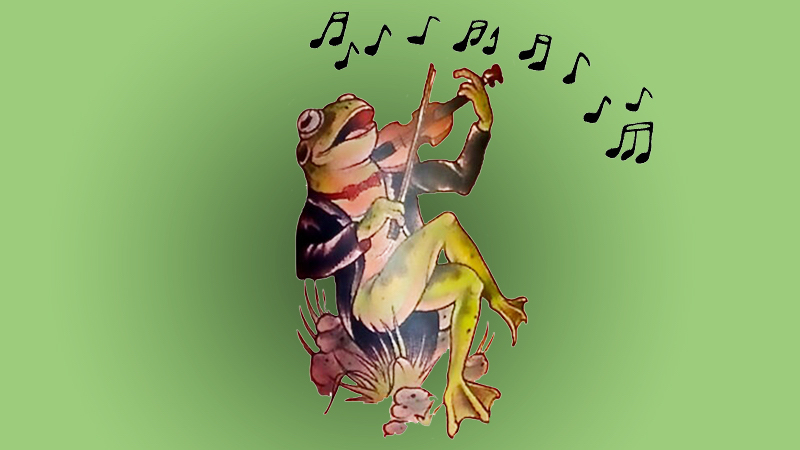 frog singing and playing