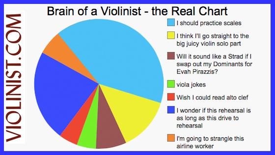 Brain of a Violinist