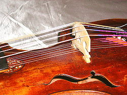 d'amore strings